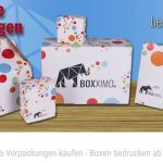 Boxximo: Web-to-Pack startup in Duitsland